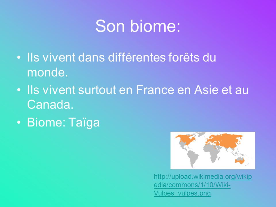 Son biome: Ils vivent dans différentes forêts du monde. Ils vivent surtout en France en Asie et au Canada. Biome: Taïga http://upload.wikimedia.org/wi