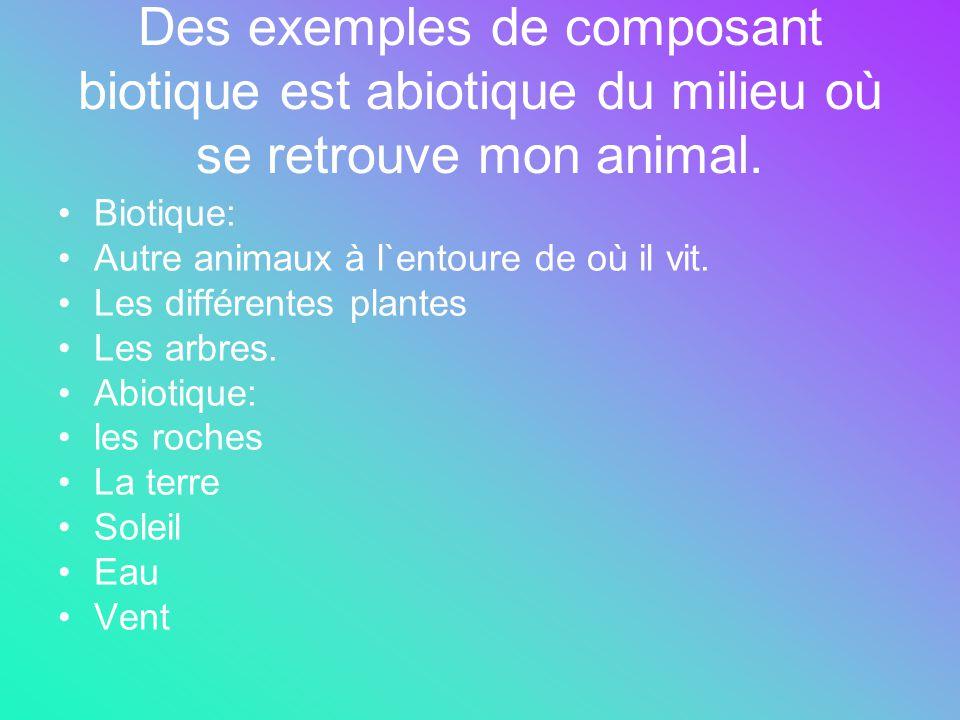 Des exemples de composant biotique est abiotique du milieu où se retrouve mon animal. Biotique: Autre animaux à l`entoure de où il vit. Les différente