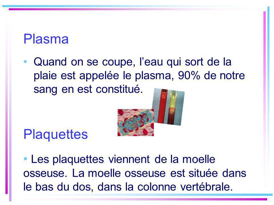 Plasma Quand on se coupe, leau qui sort de la plaie est appelée le plasma, 90% de notre sang en est constitué. Les plaquettes viennent de la moelle os