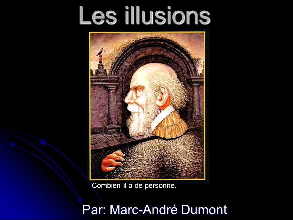 Les illusions Par: Marc-André Dumont Combien il a de personne.