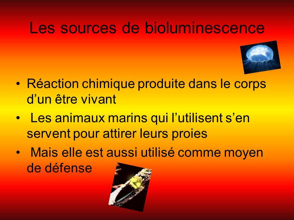 Les sources de bioluminescence Réaction chimique produite dans le corps dun être vivant Les animaux marins qui lutilisent sen servent pour attirer leu