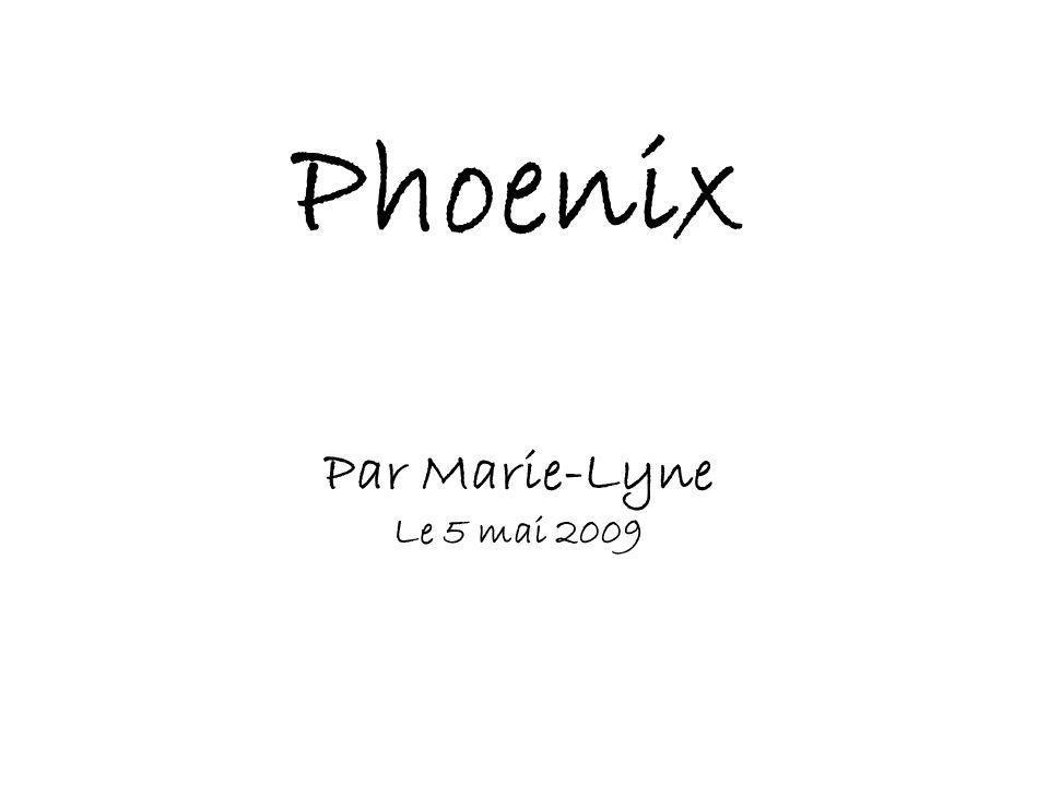 Phoenix Par Marie-Lyne Le 5 mai 2009