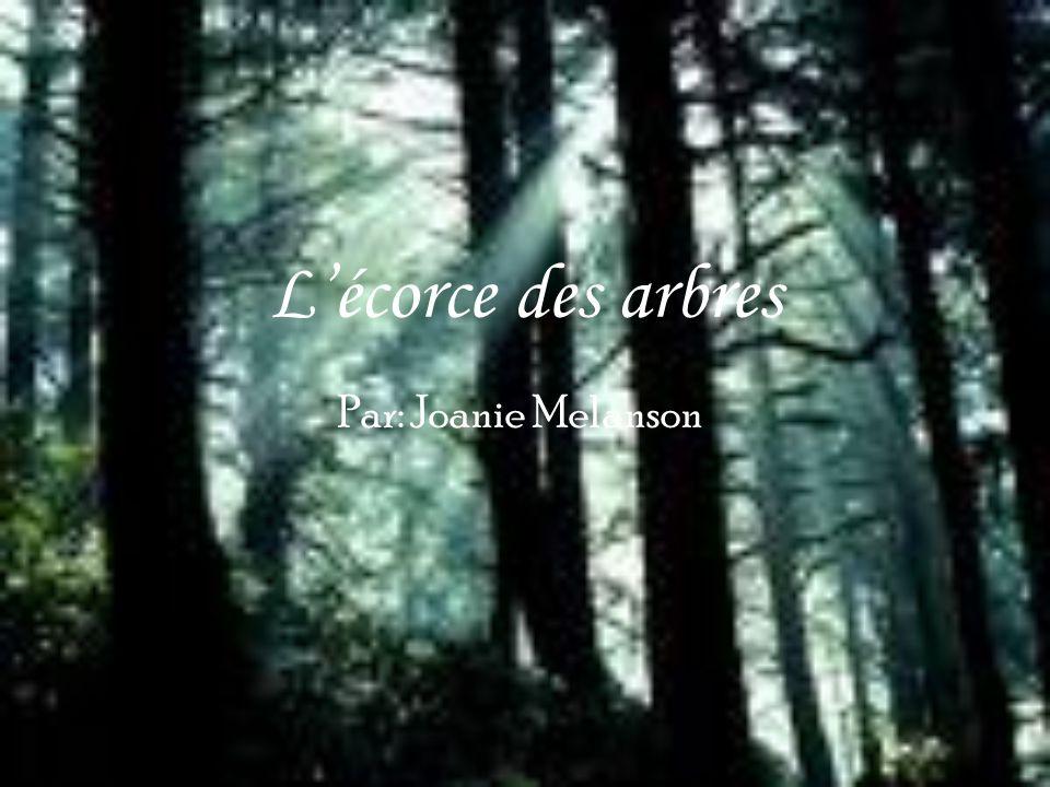 Lécorce des arbres Par: Joanie Melanson