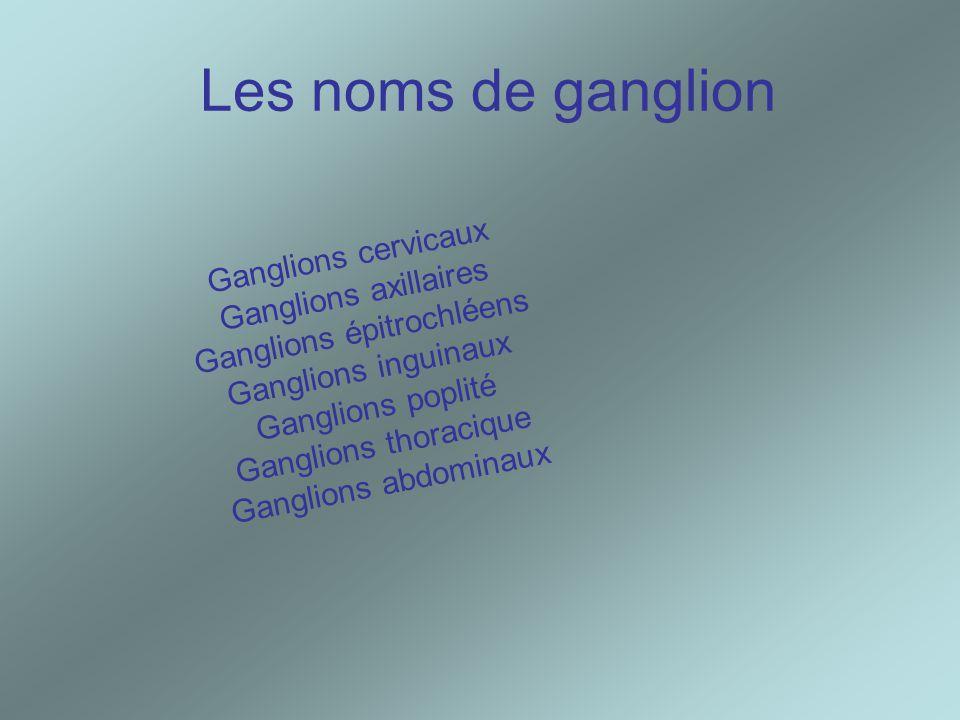 Les noms de ganglion Ganglions cervicaux Ganglions axillaires Ganglions épitrochléens Ganglions inguinaux Ganglions poplité Ganglions thoracique Gangl