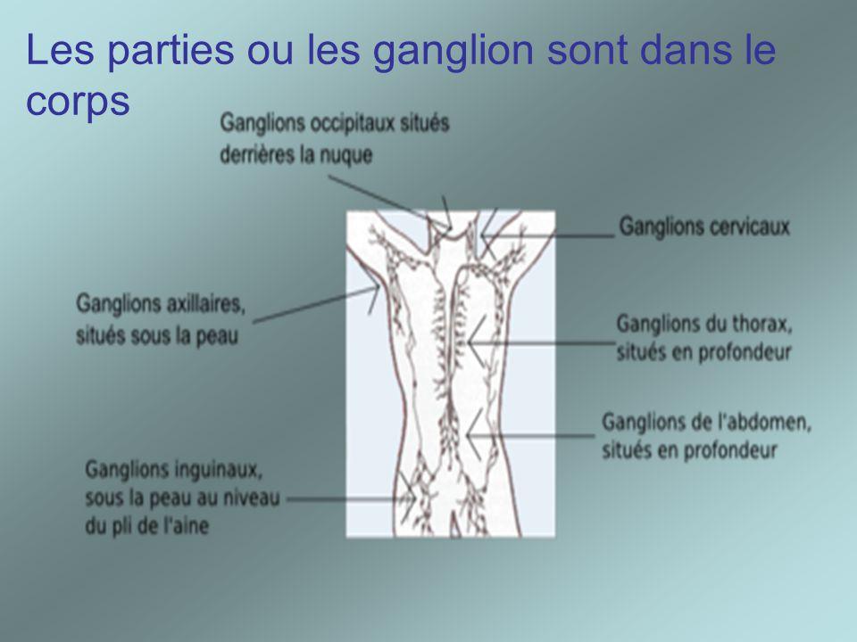 Les parties ou les ganglion sont dans le corps