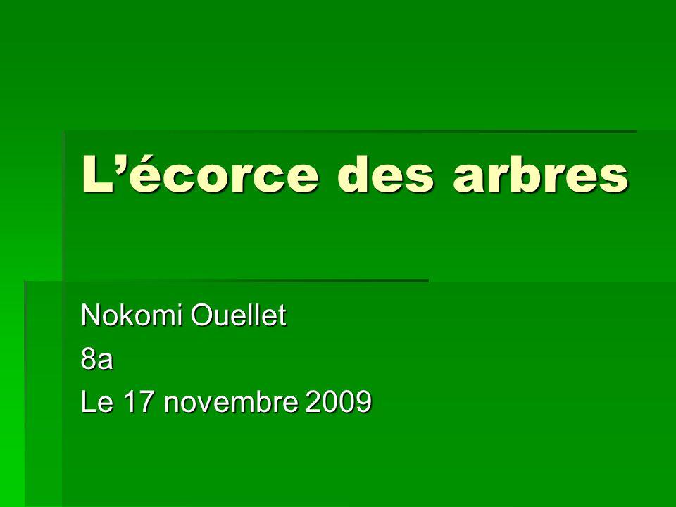 Lécorce des arbres Nokomi Ouellet 8a Le 17 novembre 2009