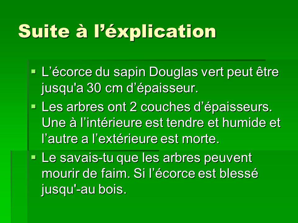 Suite à léxplication Lécorce du sapin Douglas vert peut être jusqu'a 30 cm dépaisseur. Lécorce du sapin Douglas vert peut être jusqu'a 30 cm dépaisseu