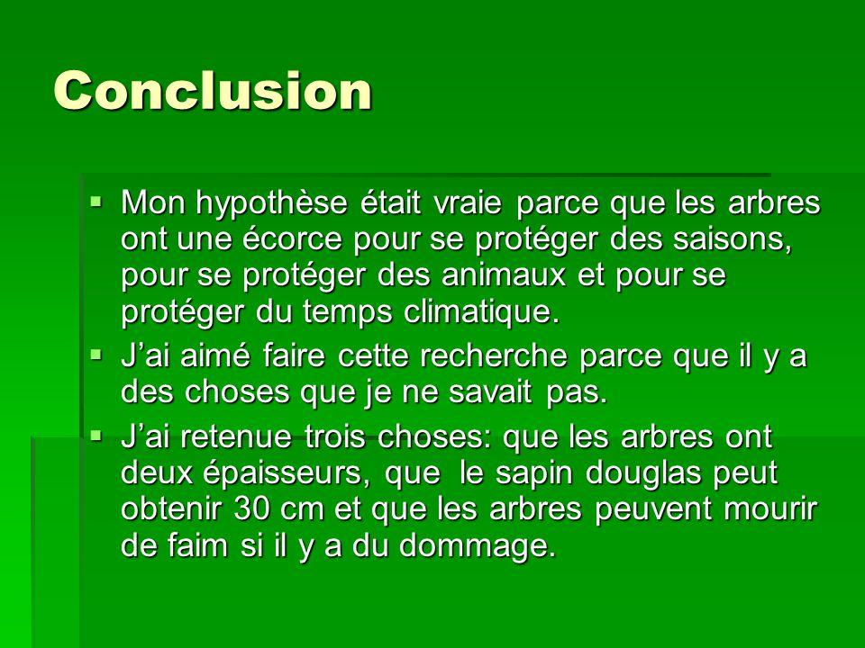 Conclusion Mon hypothèse était vraie parce que les arbres ont une écorce pour se protéger des saisons, pour se protéger des animaux et pour se protéger du temps climatique.