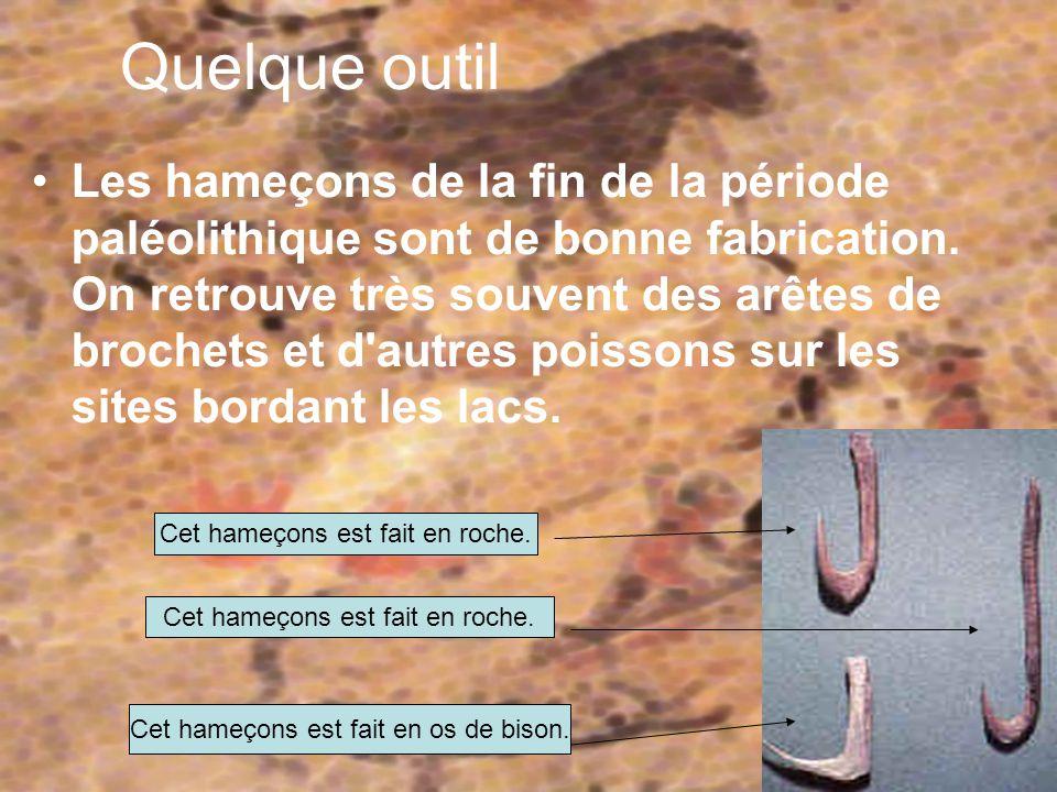 Les aiguilles servent à coudre les peaux pour faire des tentes ou les vêtements.