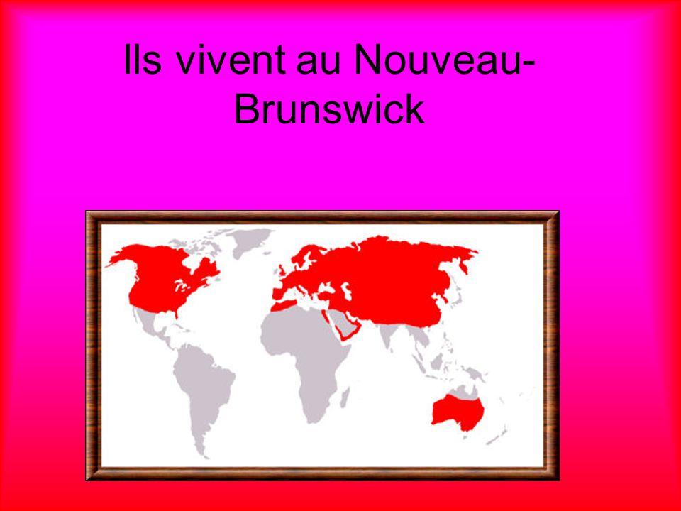 Ils vivent au Nouveau- Brunswick