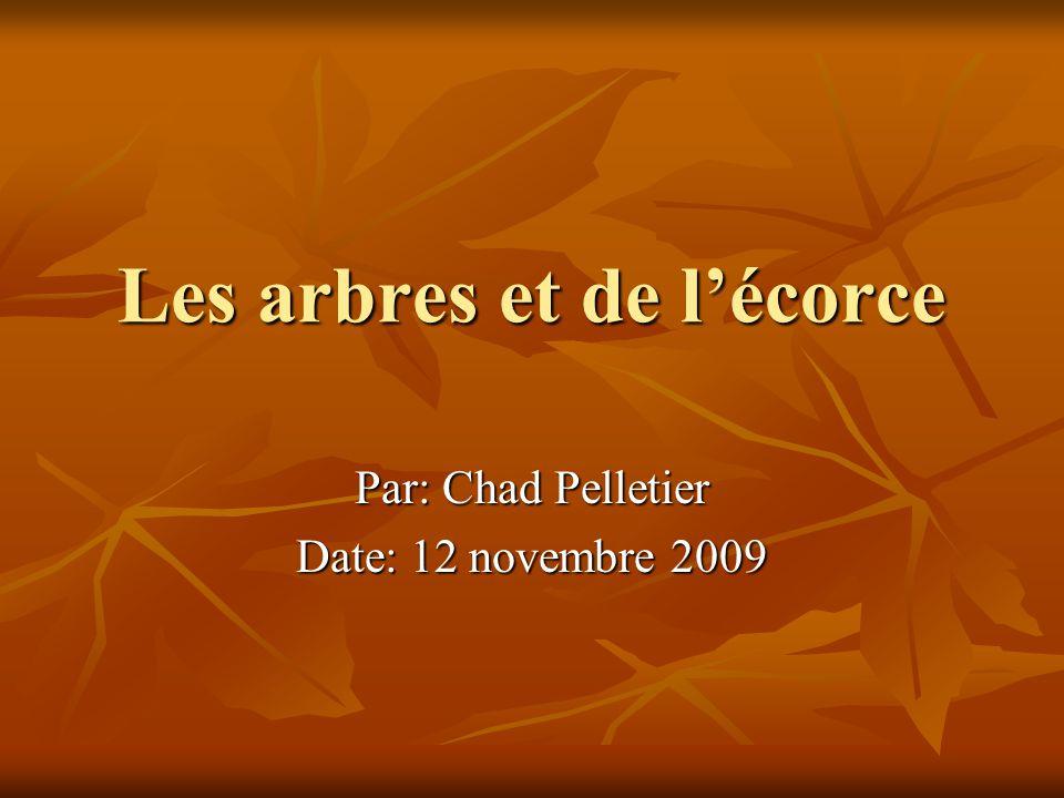 Les arbres et de lécorce Par: Chad Pelletier Date: 12 novembre 2009