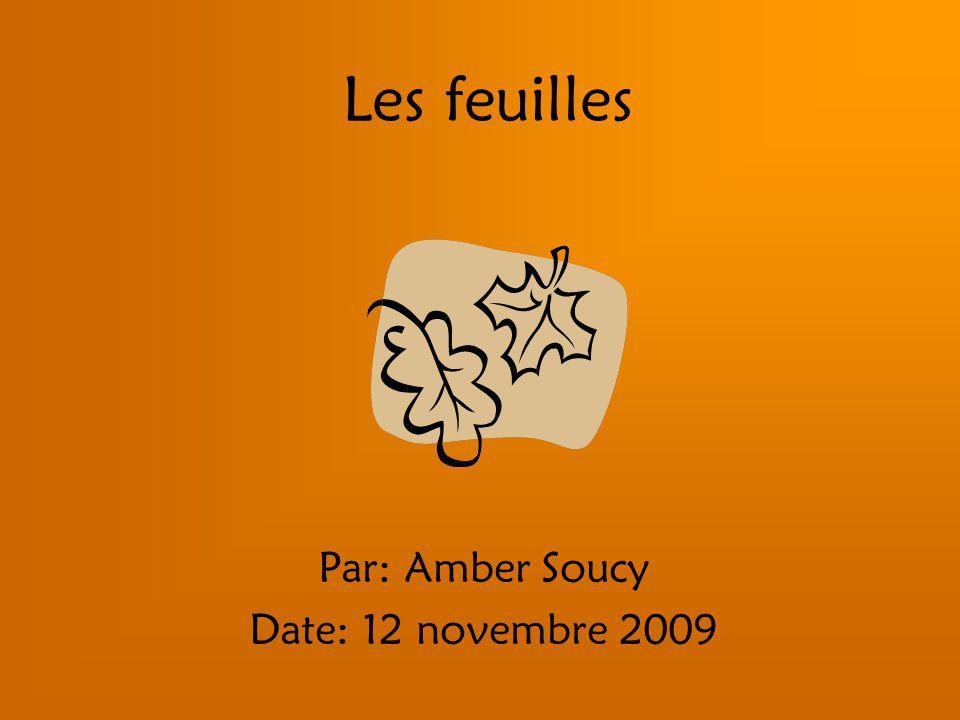 Les feuilles Par: Amber Soucy Date: 12 novembre 2009