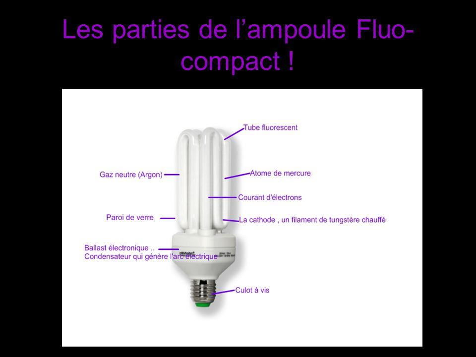 Les parties de lampoule Fluo- compact !