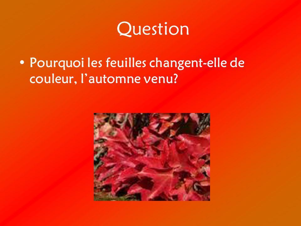 Hypothèse Mon hypothèse est que les feuilles changent de couleur parce que la terre gèle et que la nourriture a de la difficulté à se rendre aux feuilles.