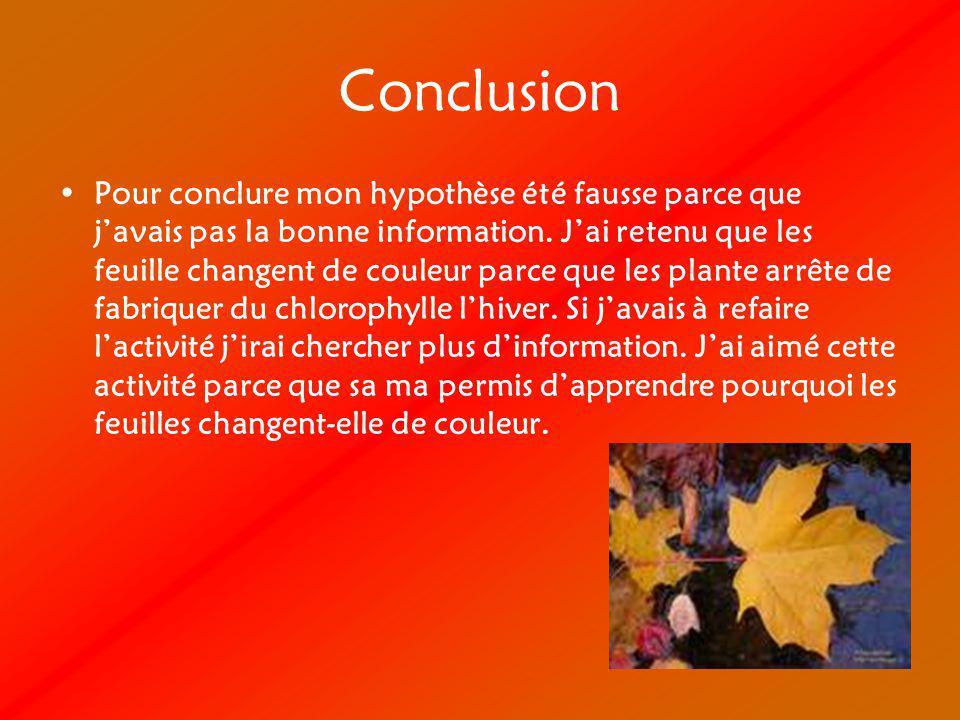 Conclusion Pour conclure mon hypothèse été fausse parce que javais pas la bonne information.