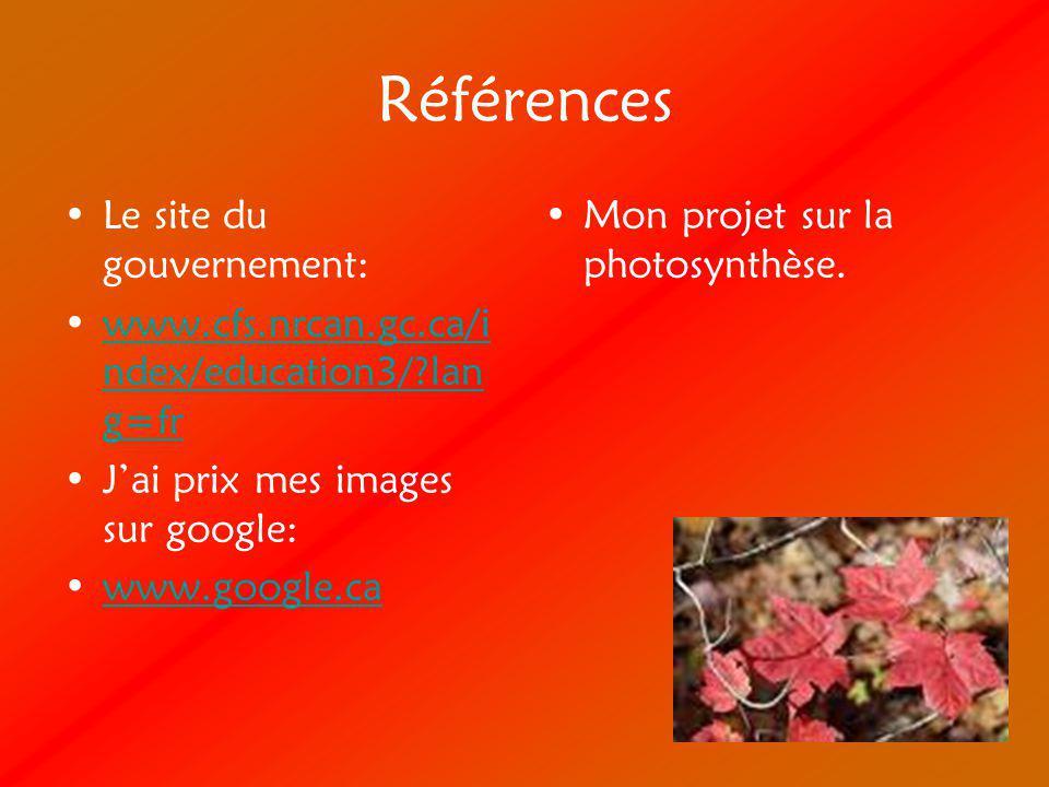 Références Le site du gouvernement: www.cfs.nrcan.gc.ca/i ndex/education3/?lan g=frwww.cfs.nrcan.gc.ca/i ndex/education3/?lan g=fr Jai prix mes images