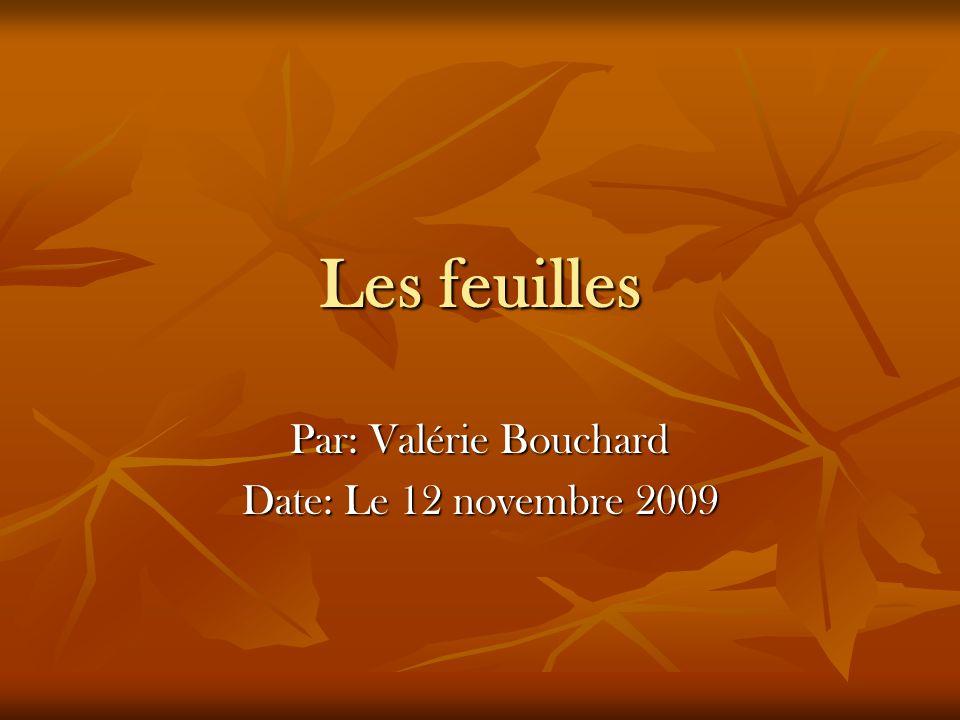 Les feuilles Par: Valérie Bouchard Date: Le 12 novembre 2009