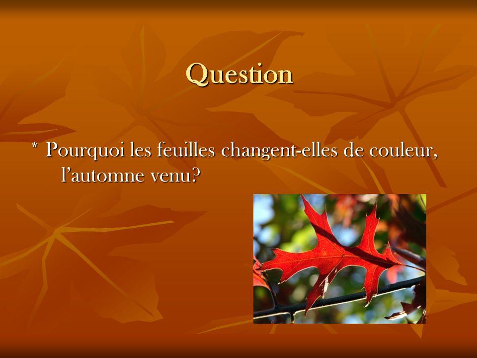 Question * Pourquoi les feuilles changent-elles de couleur, lautomne venu?