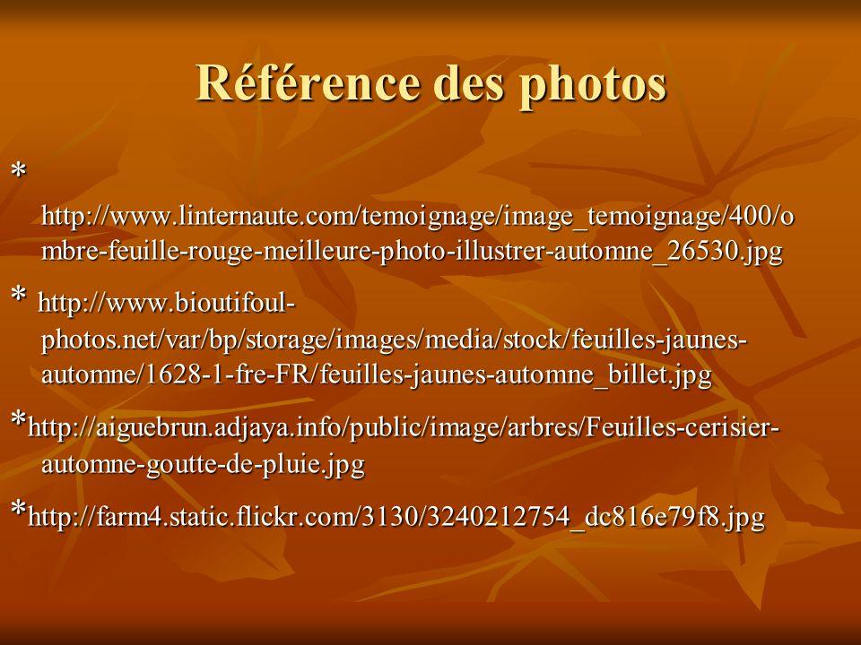Référence des photos * http://www.linternaute.com/temoignage/image_temoignage/400/o mbre-feuille-rouge-meilleure-photo-illustrer-automne_26530.jpg * h