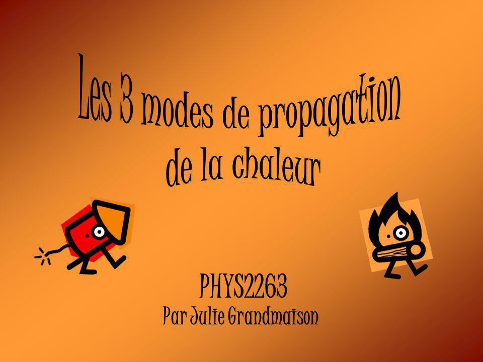 PHYS2263 Par Julie Grandmaison