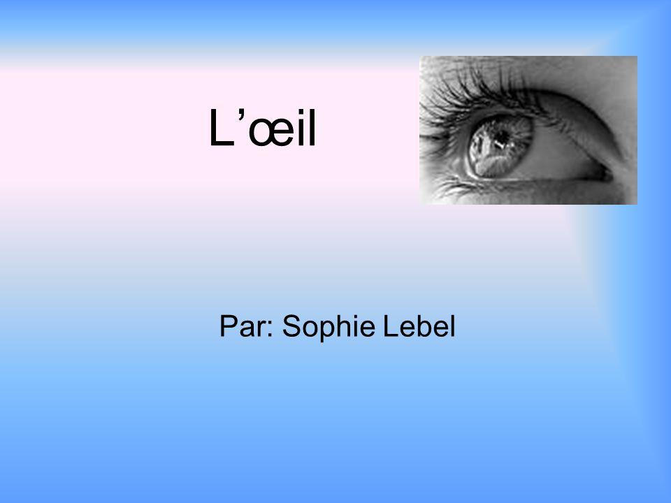 Lœil Par: Sophie Lebel