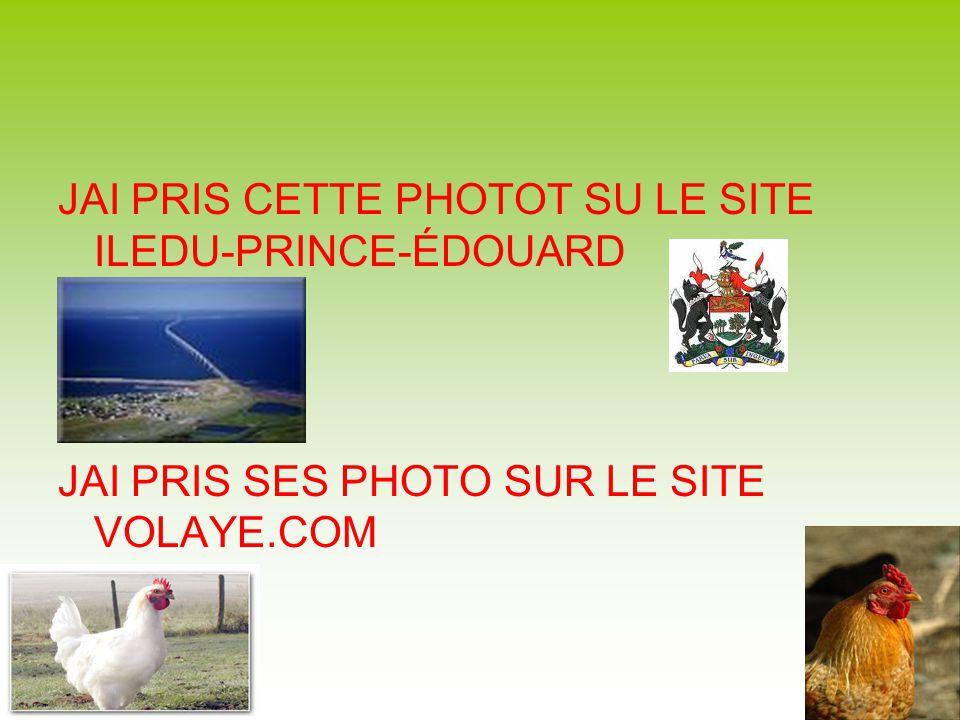 JAI PRIS CETTE PHOTOT SU LE SITE ILEDU-PRINCE-ÉDOUARD JAI PRIS SES PHOTO SUR LE SITE VOLAYE.COM