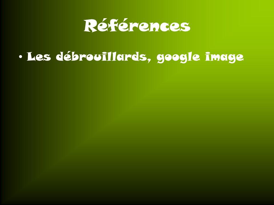 Références Les débrouillards, google image