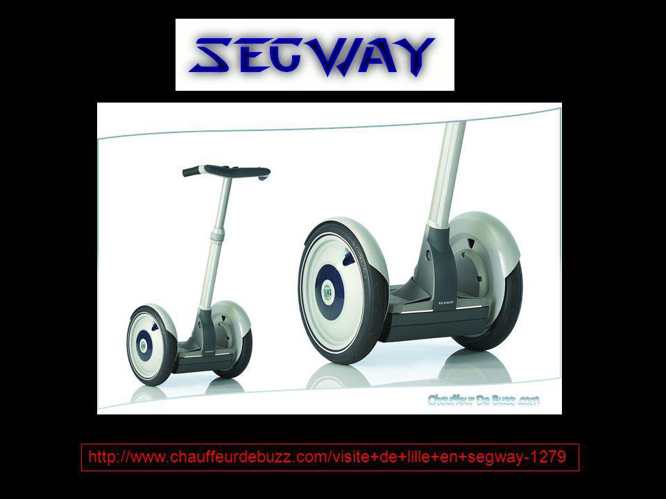 http://www.chauffeurdebuzz.com/visite+de+lille+en+segway-1279