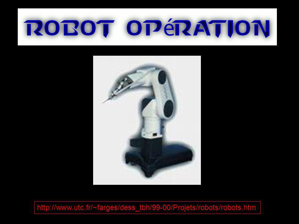 http://www.utc.fr/~farges/dess_tbh/99-00/Projets/robots/robots.htm