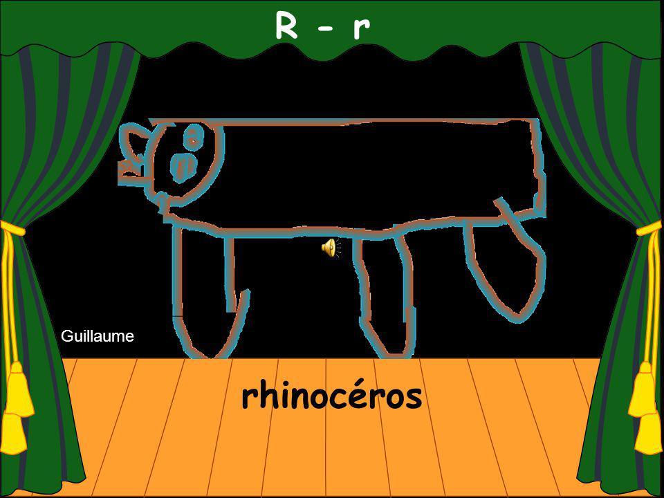 R - r rhinocéros Guillaume