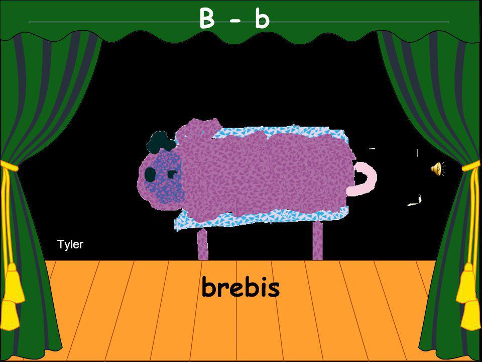 B - b brebis Tyler