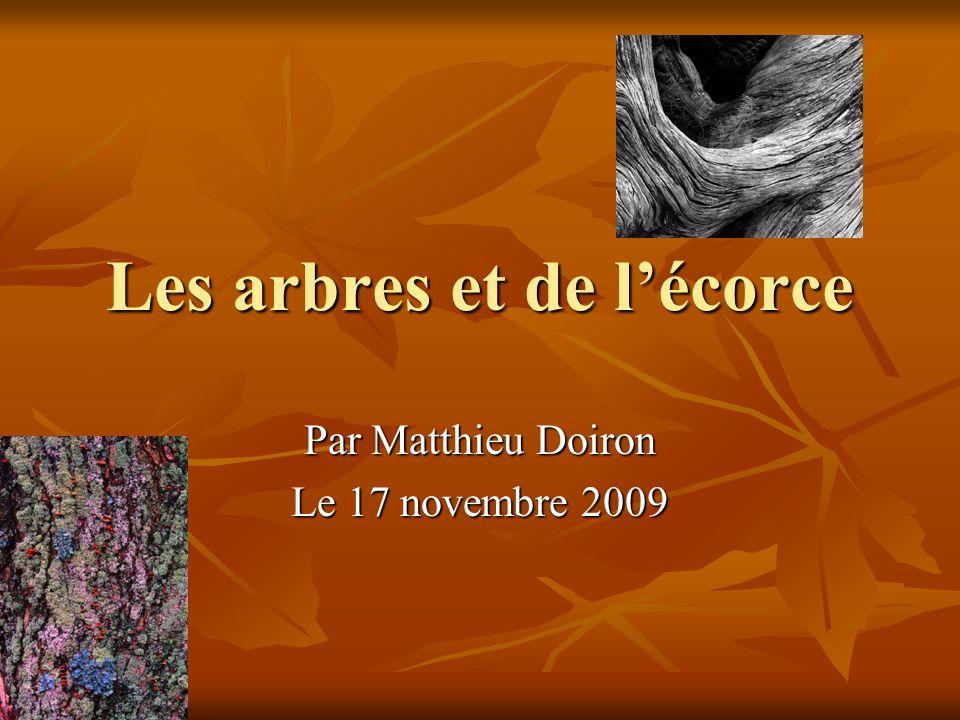 Les arbres et de lécorce Par Matthieu Doiron Le 17 novembre 2009