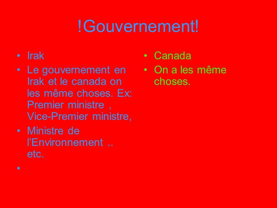 !Gouvernement! Irak Le gouvernement en Irak et le canada on les même choses. Ex: Premier ministre, Vice-Premier ministre, Ministre de lEnvironnement..