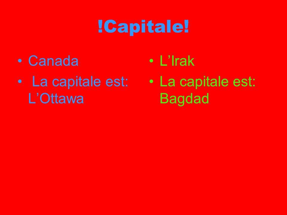 !Capitale! Canada La capitale est: LOttawa LIrak La capitale est: Bagdad