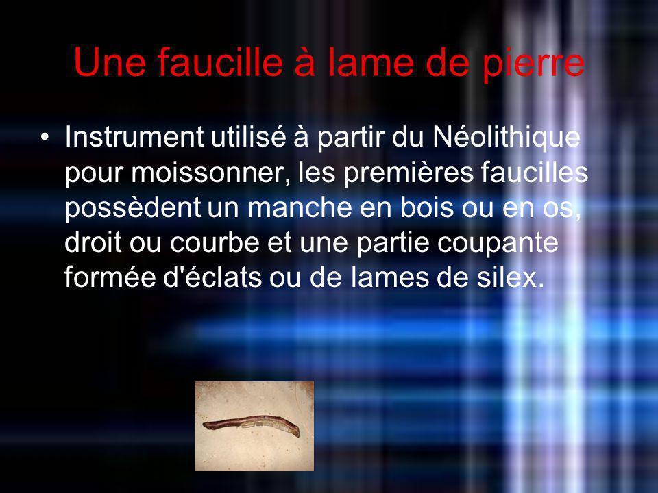Une faucille à lame de pierre Instrument utilisé à partir du Néolithique pour moissonner, les premières faucilles possèdent un manche en bois ou en os