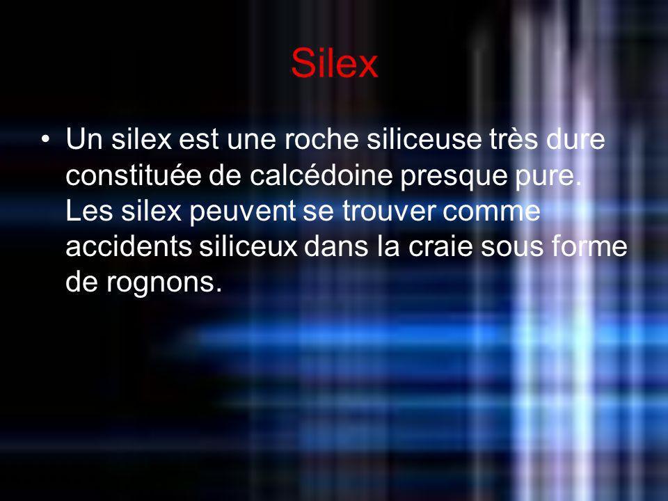 Silex Un silex est une roche siliceuse très dure constituée de calcédoine presque pure. Les silex peuvent se trouver comme accidents siliceux dans la