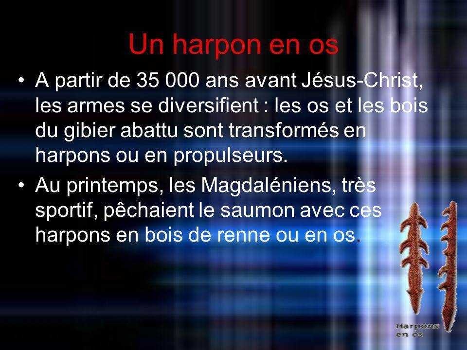 Un harpon en os A partir de 35 000 ans avant Jésus-Christ, les armes se diversifient : les os et les bois du gibier abattu sont transformés en harpons