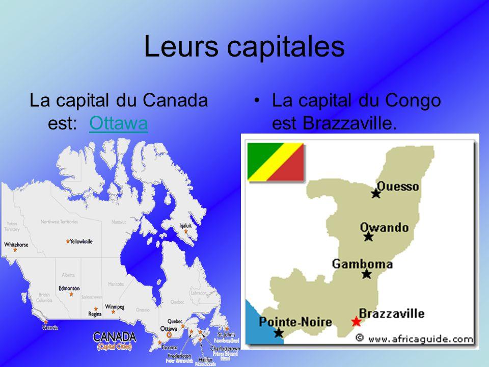 Villes importantes Les villes importantes du Canada sont :Ottawa, Montréal, Toronto, Winnipeg, Edmonton, Victoria, Vancouver, Calgary, Régina, Saskatoon, Whitehorse, Yellowknife, Iqaluit, Windsor, London, Hamilton, Québec, Fredericton, Halifax, Charlottetown,Saint-John.