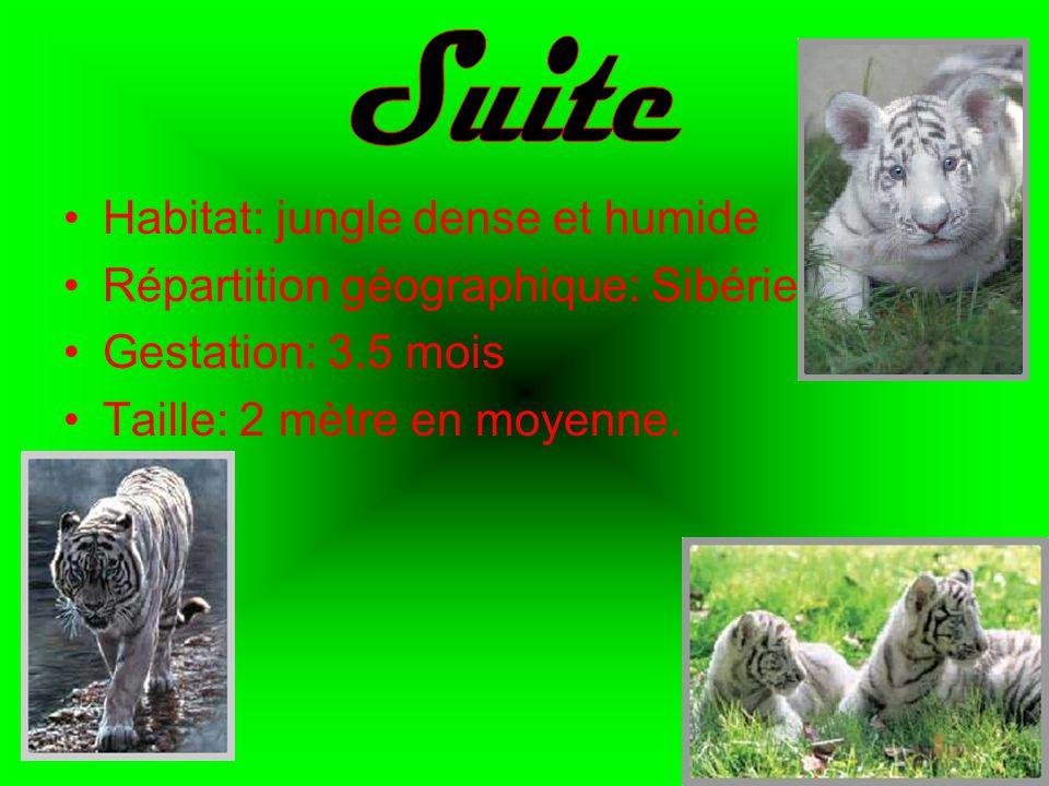 Habitat: jungle dense et humide Répartition géographique: Sibérie Gestation: 3.5 mois Taille: 2 mètre en moyenne.
