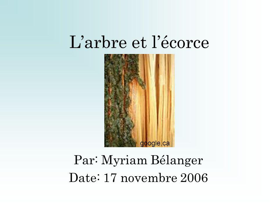 Larbre et lécorce Par: Myriam Bélanger Date: 17 novembre 2006 google.ca