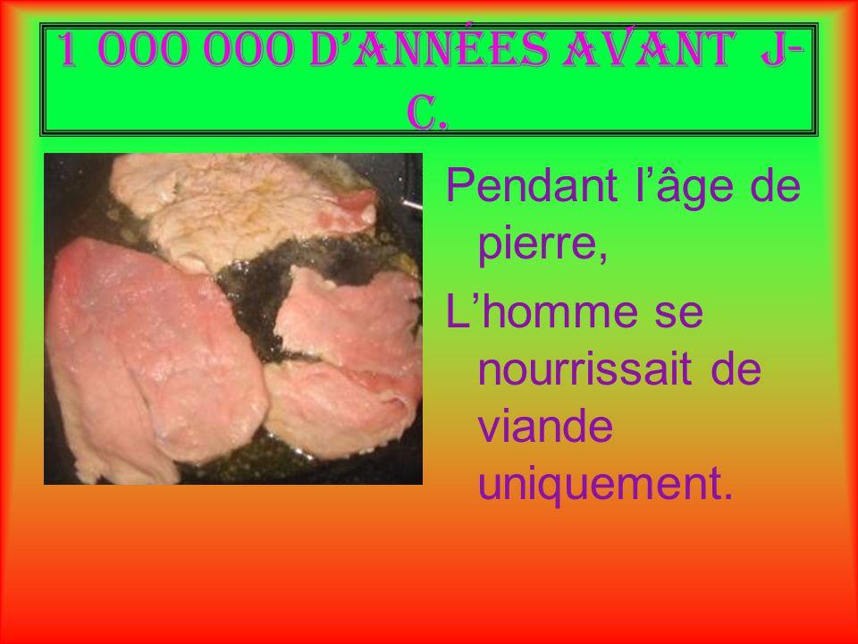 1 000 000 dannées avant J- C. Pendant lâge de pierre, Lhomme se nourrissait de viande uniquement.