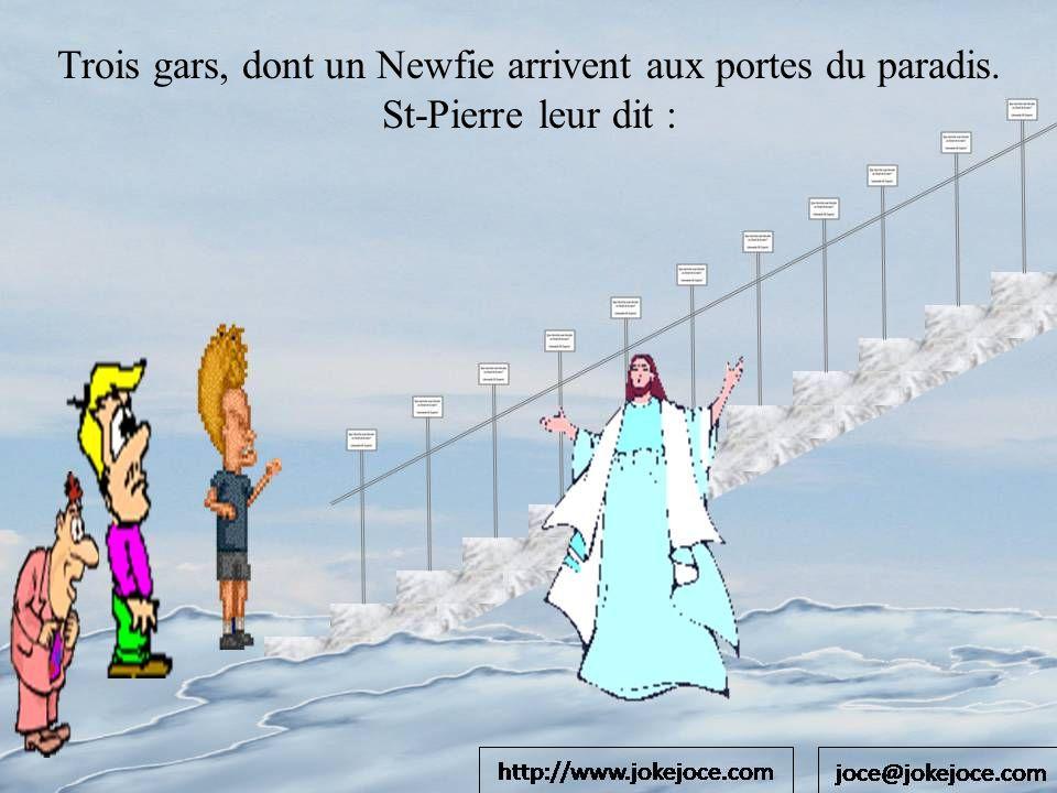 Trois gars, dont un Newfie arrivent aux portes du paradis. St-Pierre leur dit :