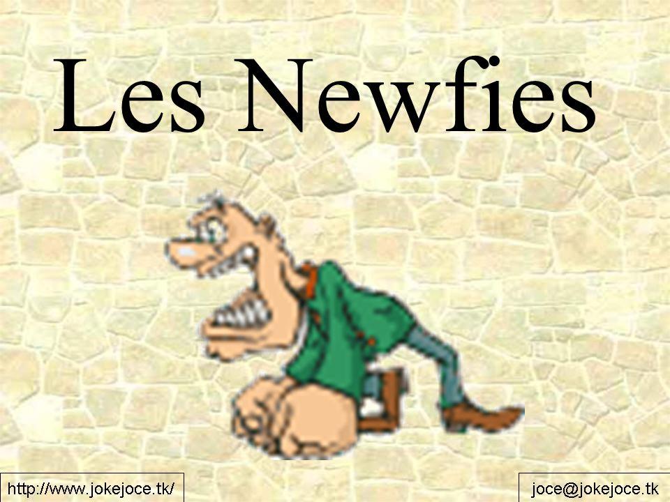 Qu est-ce qu il est marqué sous les bouteilles de bière Newfies.