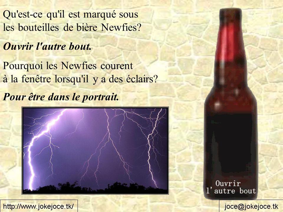 Qu'est-ce qu'il est marqué sous les bouteilles de bière Newfies? Ouvrir l'autre bout. Pourquoi les Newfies courent à la fenêtre lorsqu'il y a des écla