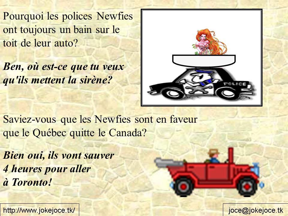 Pourquoi les polices Newfies ont toujours un bain sur le toit de leur auto? Ben, où est-ce que tu veux qu'ils mettent la sirène? Saviez-vous que les N