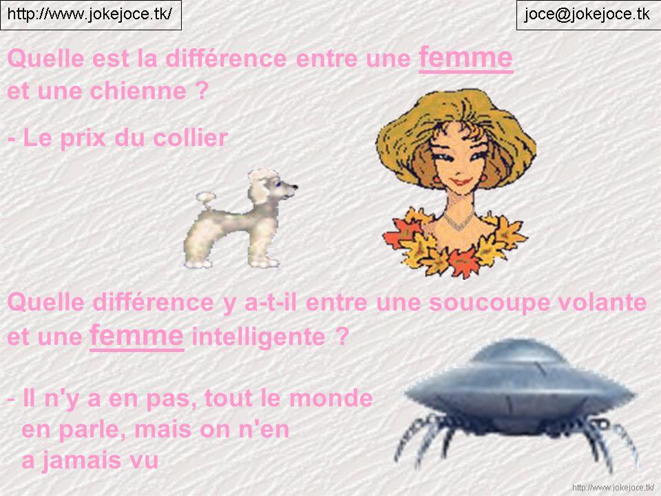 Quelle différence y a-t-il entre une soucoupe volante et une femme intelligente ? - Il n'y a en pas, tout le monde en parle, mais on n'en a jamais vu