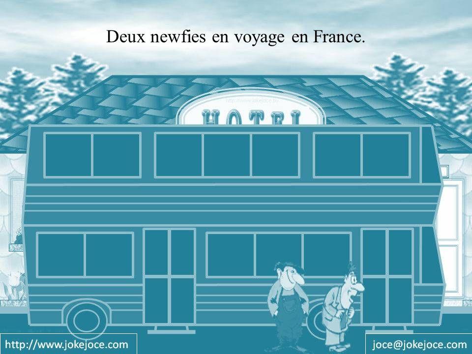 Deux newfies en voyage en France.