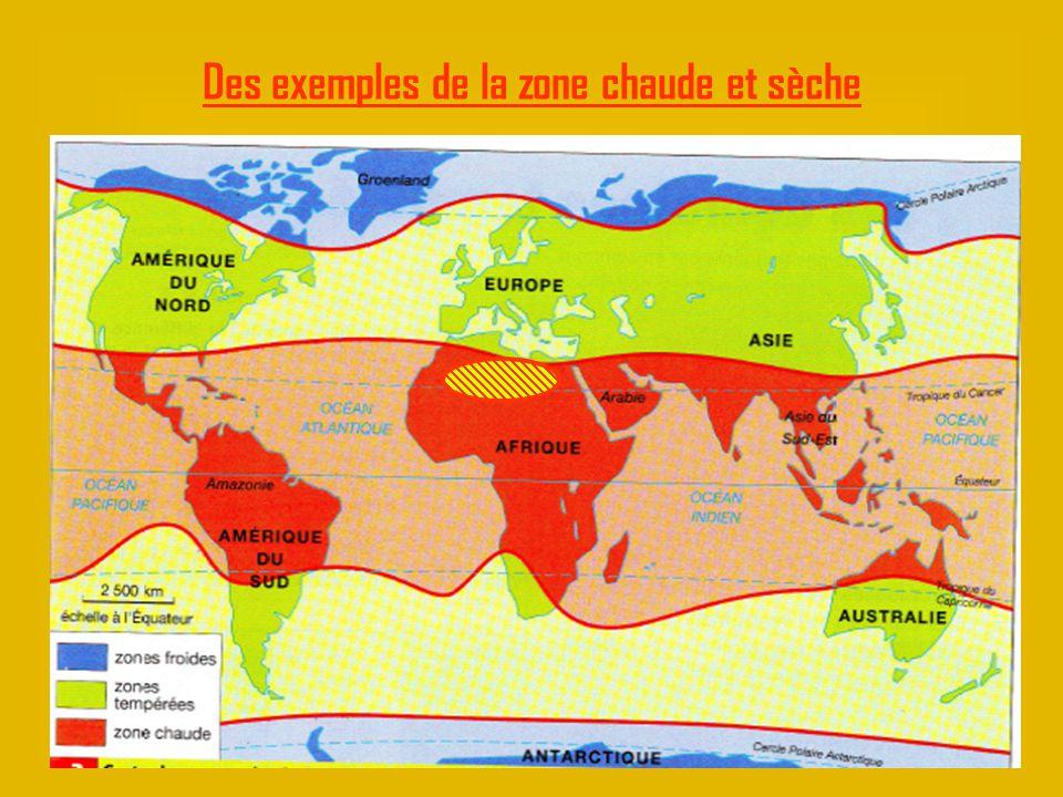 Des exemples de la zone chaude et sèche