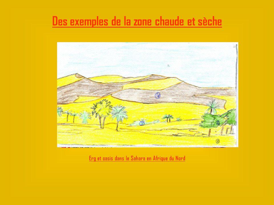Erg et oasis dans le Sahara en Afrique du Nord
