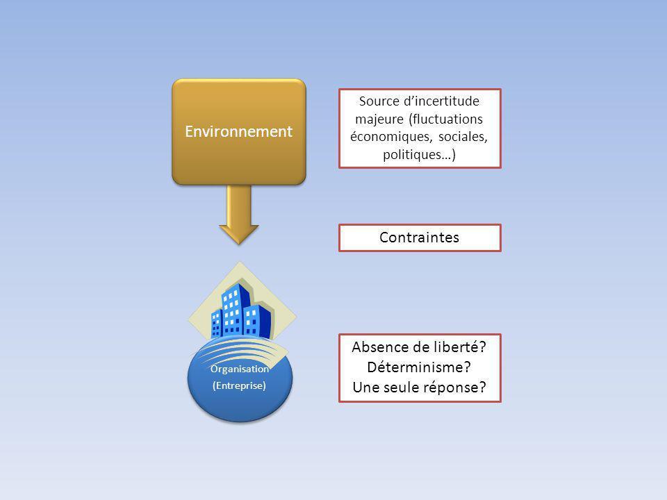 Organisation (Entreprise) Environnement Source dincertitude majeure (fluctuations économiques, sociales, politiques…) Contraintes Absence de liberté.